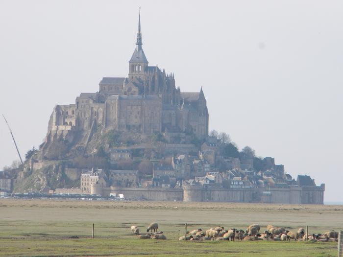 http://leblogdetiti.cowblog.fr/images/Articles/DSCN1659.jpg