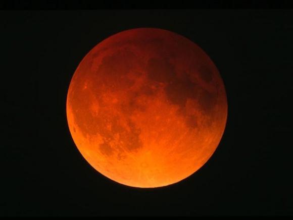 http://leblogdetiti.cowblog.fr/images/Articles/pedroreeclipse000121.jpg